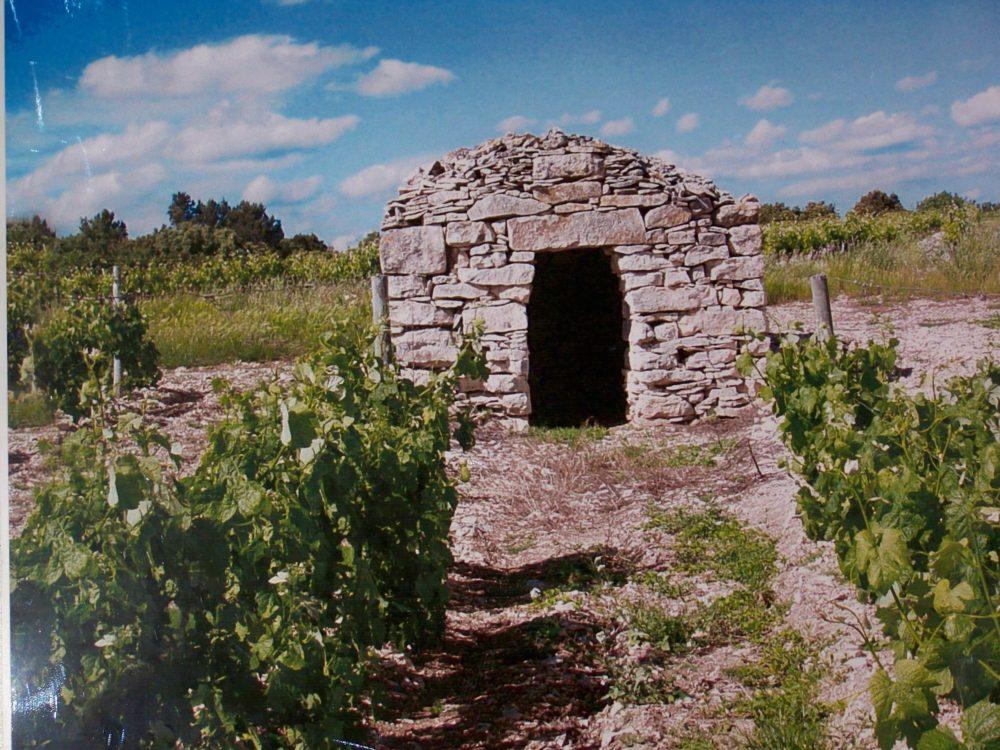 Abri d'une vigne dans la commune d'Arzens