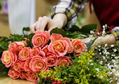 Estel'Fleurs (Plantes Potager Fleurs)